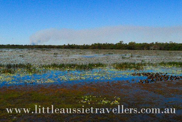 Family Visit Mamukala Wetlands Kakadu