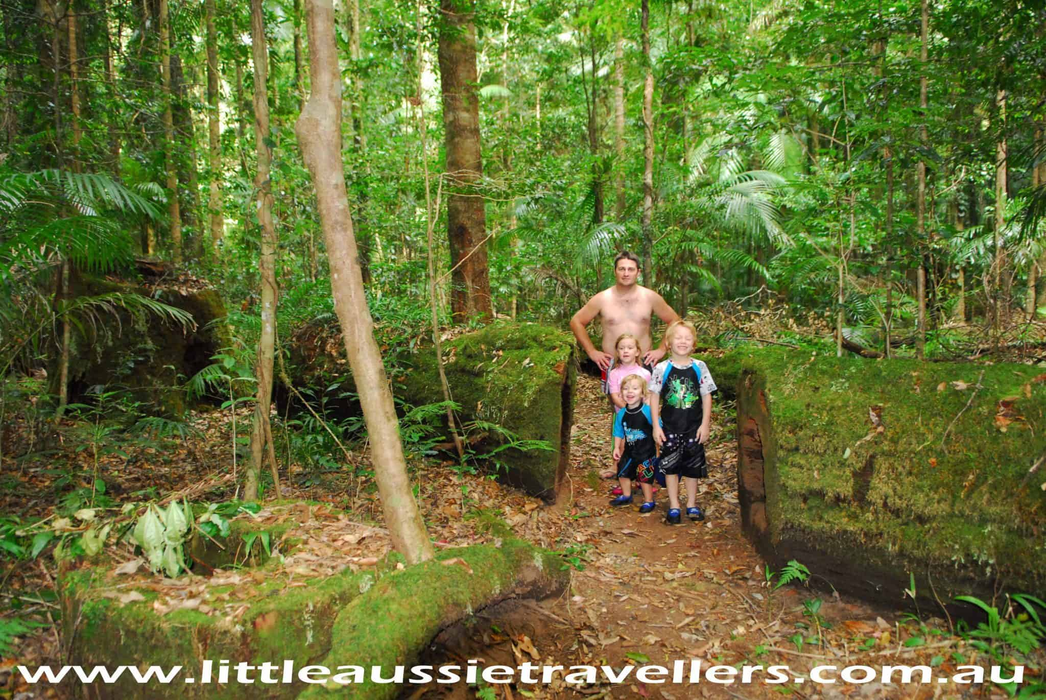 Port Macquarie Holidays – Things to do Other than Beaches.