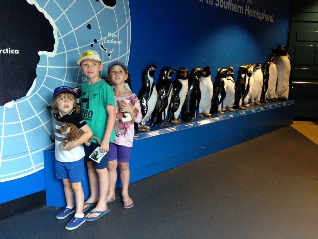family travel australia taronga zoo