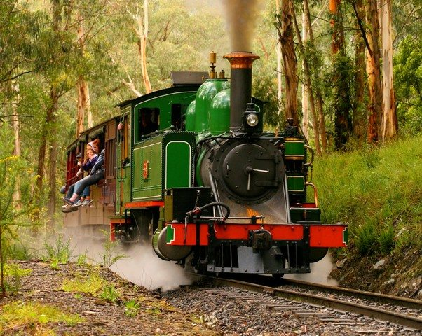 Kid-Friendly Excursions in the Yarra Valley