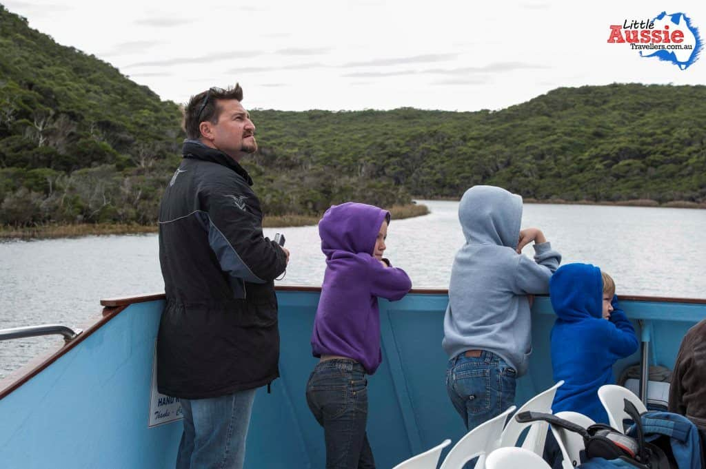 tarkine tasmania with kids