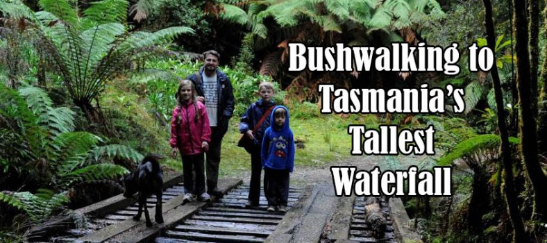 Tasmania waterfalls with kids