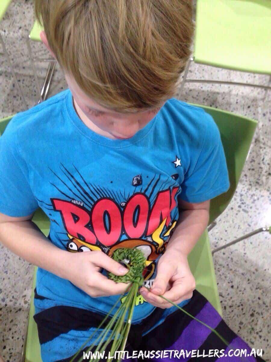 Kids Aboriginal Weaving activities Port Macquarie