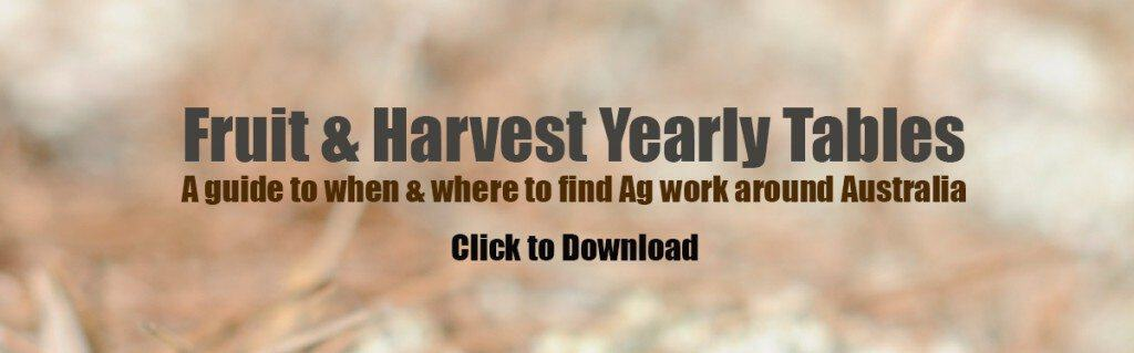 when and where fruit picking jobs australia